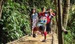 Malgré son handicap, Mukhlis Abdul Holik parvient à emprunter le même pont en bois que ses camarades pour aller à l'école.