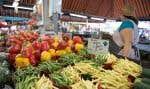 Ce changement de régime alimentaire aurait le potentiel de libérer, au cours des prochaines décennies, «des millions de kilomètres carrés de terre».