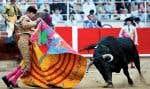 La mise à mort des taureaux ne sera plus tolérée dans les arènes de la Catalogne.