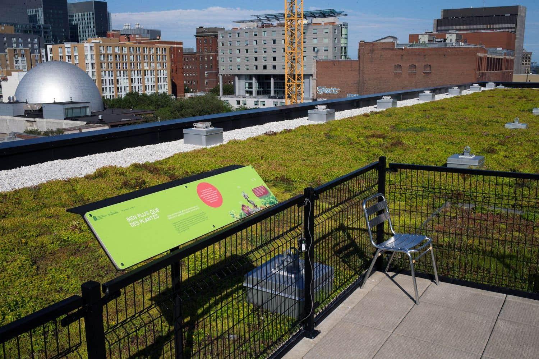 Les toits verts peinent pousser montr al le devoir - Maison du developpement durable ...